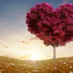 Kumpulan DP BBM Bergerak Kata Romantis Terbaru