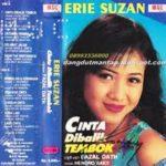 Profil Dan Biodata Lengkap ERIE SUZAN Guru Vokal D' Academy Asia 2 Indosiar