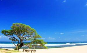 Tempat Wisata di Jogja yang sering digunakan untuk Selfie: Pantai Poktunggal Yogyakarta