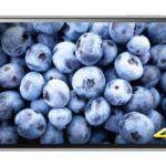Harga Sony Xperia Z5 Premium Baru dan Bekas Pertengahan Maret 2017, Smartphone 4K Octa-core dengan Kamera Utama 23MP