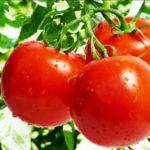 Cara Mengatasi Jerawat Batu Dengan Sayuran
