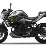 Harga Yamaha MT-25 Terbaru Agustus 2019, Spesifikasi Mesin SOHC 250cc Teknologi Variable Valve Actuation (VVA)
