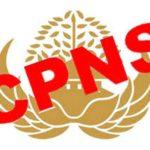 CPNS 2017 Mahkamah Agung dan Kemekumham RI, Jadwal Lengkap Alur Pendaftaran Online website sscn.bkn.go.id