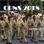 Formasi CPNS 2018: Peluang Posisi dari Pensiunan Mencapai 200 Ribuan, Wow Banyak!