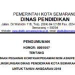 Lowongan Kerja Non PNS Kota Semarang 2018, Seleksi Tenaga Kontrak di Mulai Desember 2017