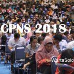 Penerimaan CPNS 2018, Ingat Awal Tahun Sudah Mulai!