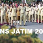 Penerimaan CPNS 2018 Jatim, Spesial untuk GTT dan PTT